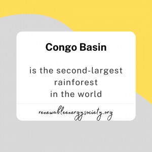 Congo Basin is the second largest rainforest in the world