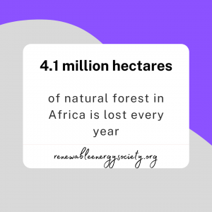 4.1 million hectares of natural forest in Africa is lost every year